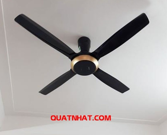 quat-tran-panasonic-f56xpg-4-canh-3-org