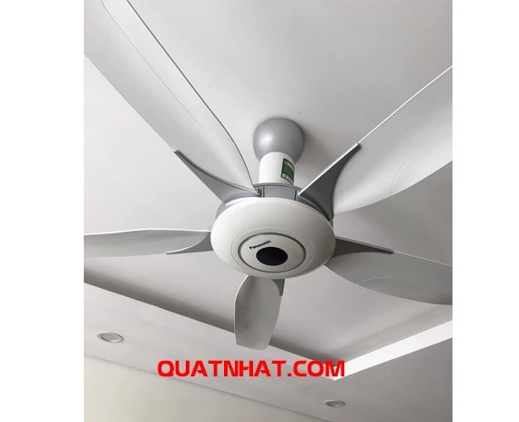 quat-tran-panasonic-f60wwk-5-canh-6-org